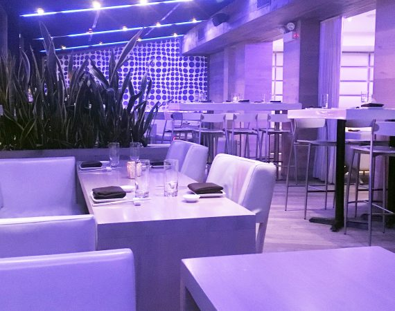 This is a review of Chicago seafood restaurant, Jellyfish in the Goldcoast neighborhood by food writer, Leah Nolan of the Chicago Chic.