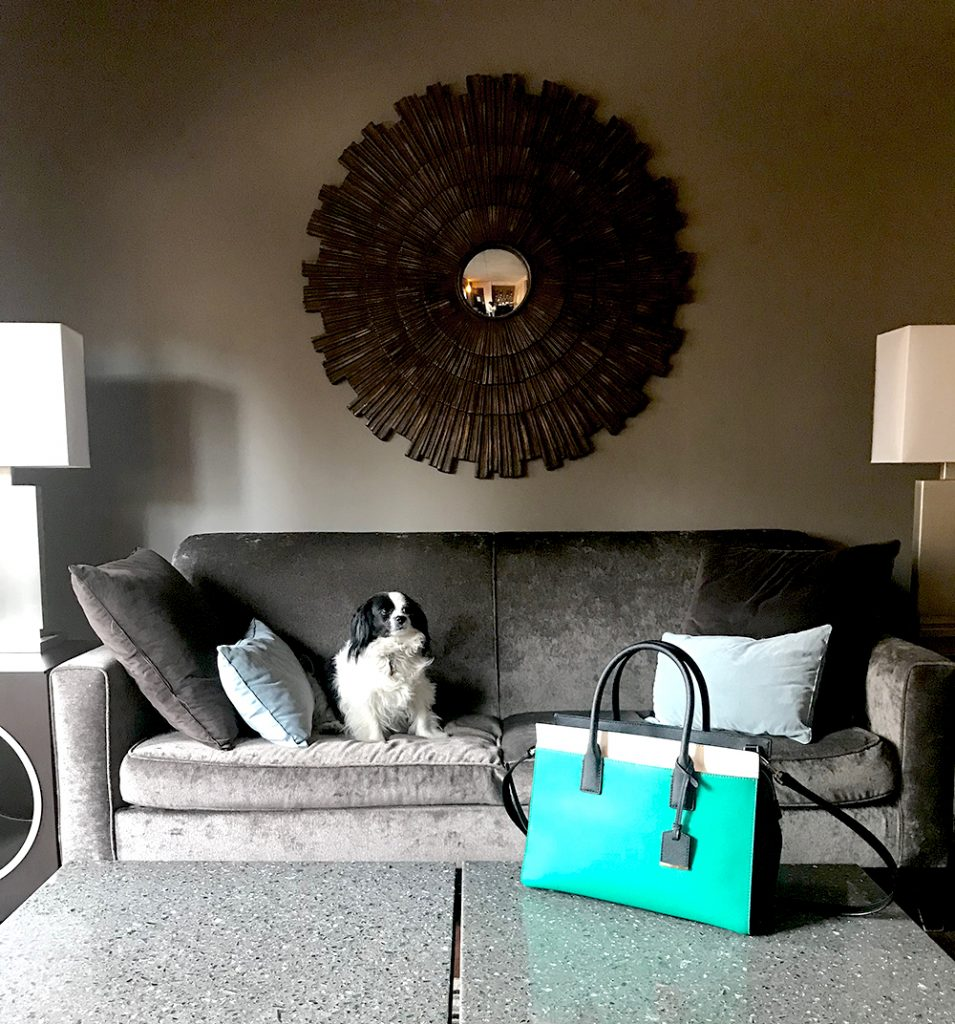 Best dog friendly hotels in Chicago: the dana hotel and spa as seen on the Chicago Chic with Leah Nolan.